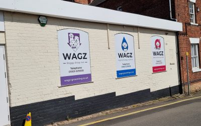 Security system installation at Wagz Pet Boutique in Bassetlaw